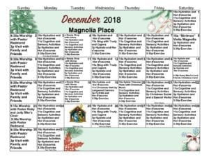 Magnolia - December 2018